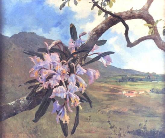 Mata de orquidea y paisaje