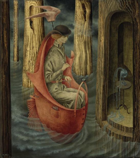 exploracion de las fuentes del rio orinoco, remedios varo
