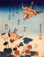 Averla e rondine con fragole selvatiche e begonie, 1834